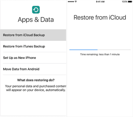 Restore iMessages from iCloud Backup